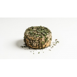Mentha refined with dried...