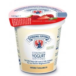 Yogurt Fragola 20 x 125g...