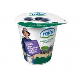 Whole milk yogurt Blueberry...