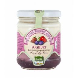 Yogurt mixed forest berries...