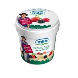 Yogurt intero gusto frutti...