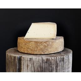 Kasus formaggio di latte...