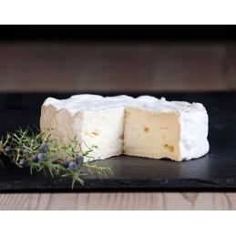 GINiz cow soft cheese...