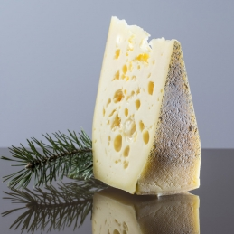 Mountain cheese from Sesto...