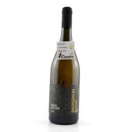 Sauvignon 2020 Mauslocher Weingut