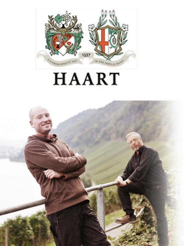 Haart Reinhold