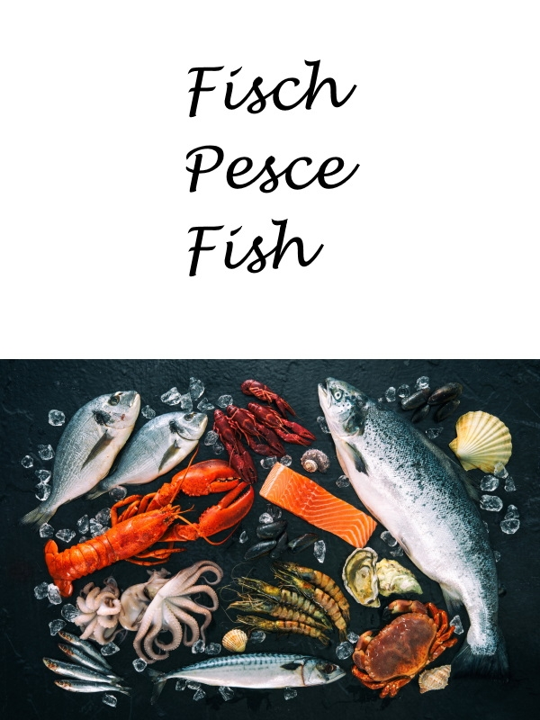 Fisch - Pesce - Fish
