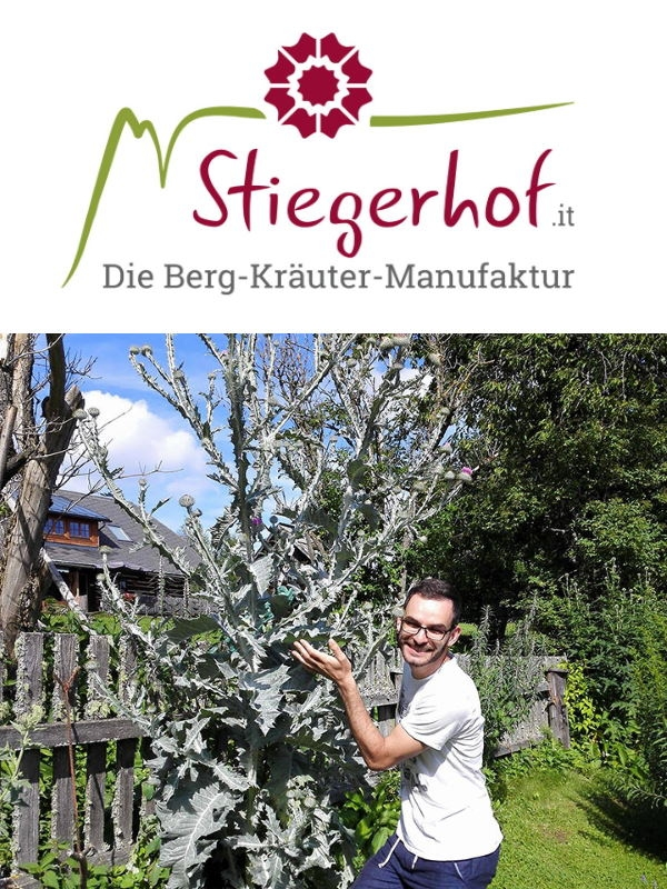 Stiegerhof